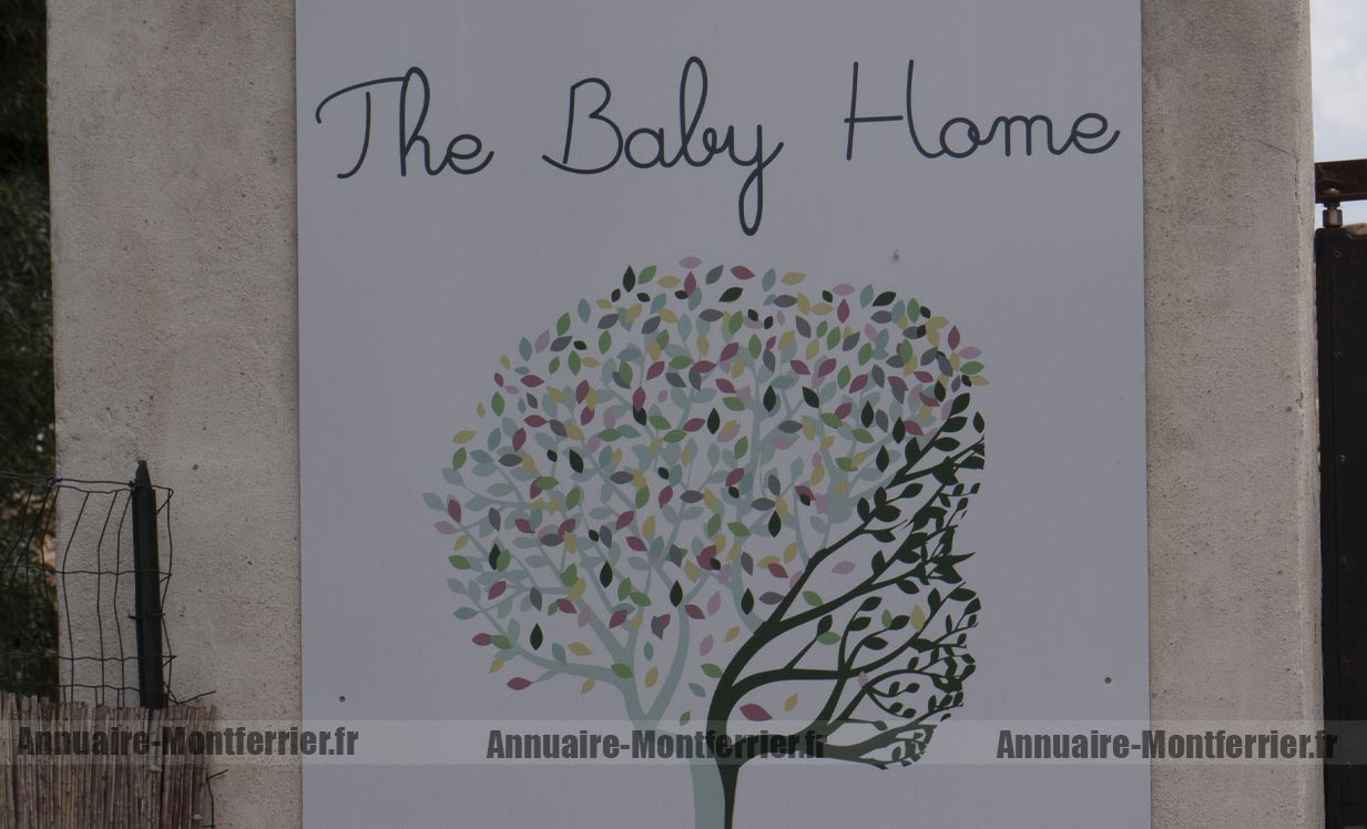 THE BABY HOME